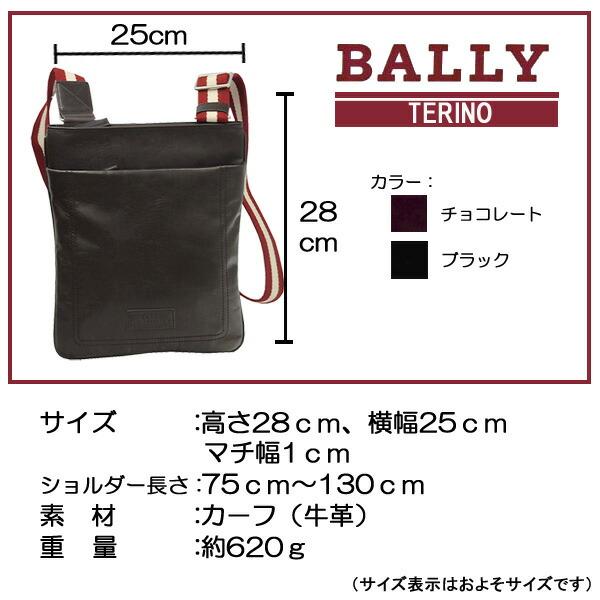 バリー TERINO ショルダーバッグサイズ