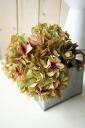 Ziyang hydrangea flower artificial flower グリーンマーブル-1 アリスハイドレンジア