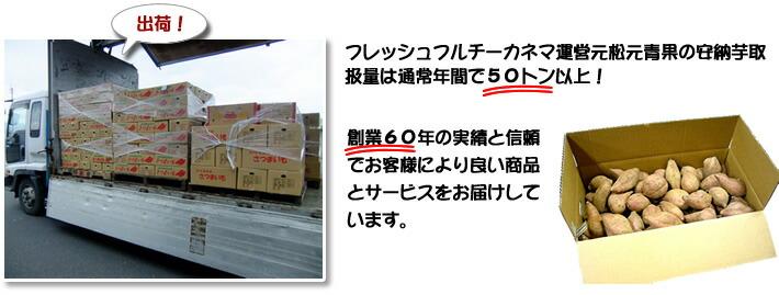 フレッシュフルチーカネマ運営元松元青果の安納芋取扱量は通常年間で50トン以上!