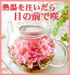 母の日・お花のつぼみとティーポット