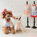 JENNY dress celebrity dog