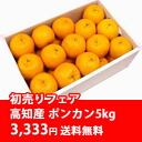 Beginning of 2014 selling fair ★[!] ◆A home ponkan orange (number of 5 kg of treasuring / balls )★[ entrusting you is the way it goes) of Tosa [, as for the storehouse ]※ cool delivery service, +210 yen needs +105 yen, the C.O.D..]