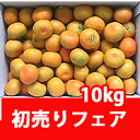 ◆ 2013 first selling fair ★ Shikoku orange (temperature in Mandarin) 10 kg (ball number of Omakase dishes) ★ [always] a [collection]