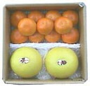 ★ yamakita Orange 1. 2 kg, House pomelos (500 g) x 2 ( Pummelos ) assorted ★ COD fee +210 Yen is required
