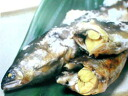 ★ Kochi produced and herring roe on Ayu ( aquaculture, Chef's, boxed, tail number 1 kg ) ★
