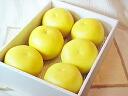 ' ◆ 최고급! 온실 토사 포 멜로 (さぶん!) 약 3kg/大玉 5 ~ 6 방울의 (예약 상품) ※ 대금 상환은 + 210 엔 필요 합니다.