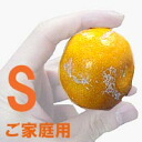 ★! Yamakita Mikan high profile from your home S size 5 kg ★ (Mikan has Yamato) * COD fee +210 Yen required