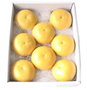 ★ roji Tosa Buntan (Pummelos) approx. 5 kg-luxury products ( L-2 L size = 8-12 ball ) ★