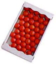 ■ tokutani tomato ★ luxury ◆ tokutani fruit tomatoes 2 kg ( 24-49 ball size ) ★