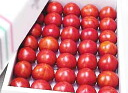 ★ Kochi production and high sugar content tomato fruit 1. 8 kg boxed ( us household & ball number of Omakase products ) ★ [ZAO]