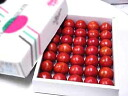 ★ high sugar content tomato and about 1. 8 kg Kochi from your gifts OK rank ( 24 ~ 36 ball size ) ★