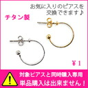Hoop earrings (Titanium catching)