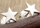 STAR ★ pierced earrings