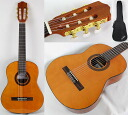 Cordoba C1 1 / 2 Size classical guitar Cordoba child-friendly mini size classical guitar 1 / 2 size