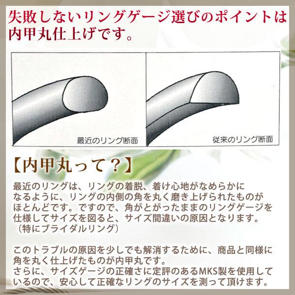 内甲丸の参考画像