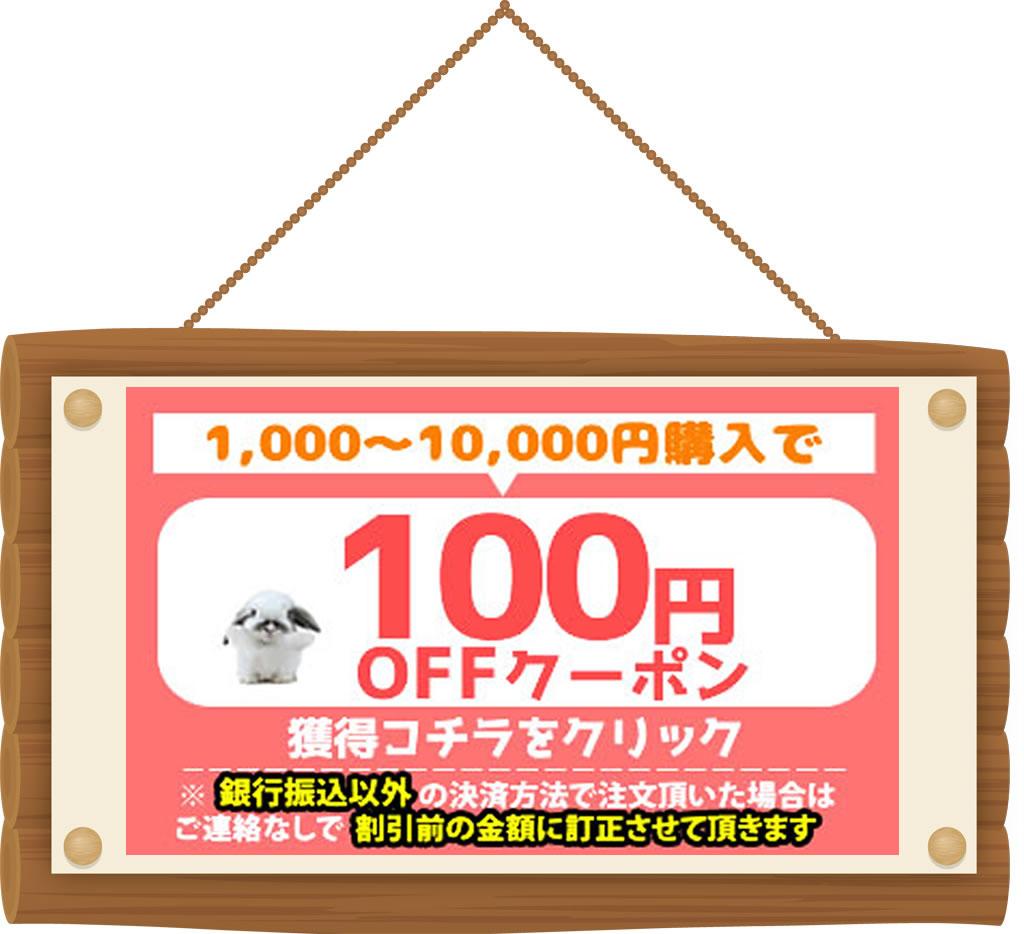 100円OFFクーポンを  GET!