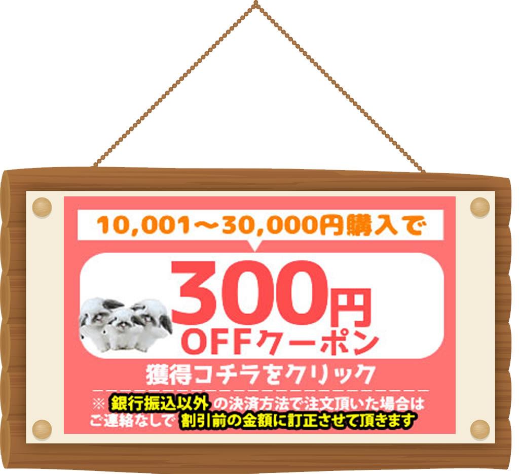 300円OFFクーポンをGET!