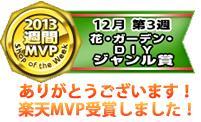 2013年12月ジャンル賞