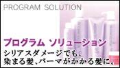 資生堂 プログラムソリューション