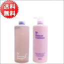 Oh, re-an undershirt: 1,020 ml/g of プラチナムシャンプー & treatment sets