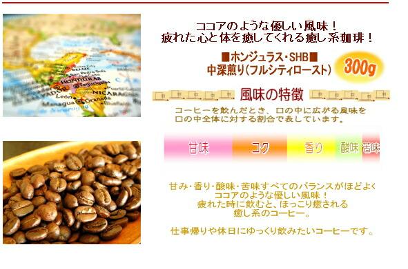 nxgx有道翻译 nxgxfree图片