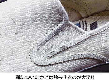 靴についたカビは除去するのが大変!