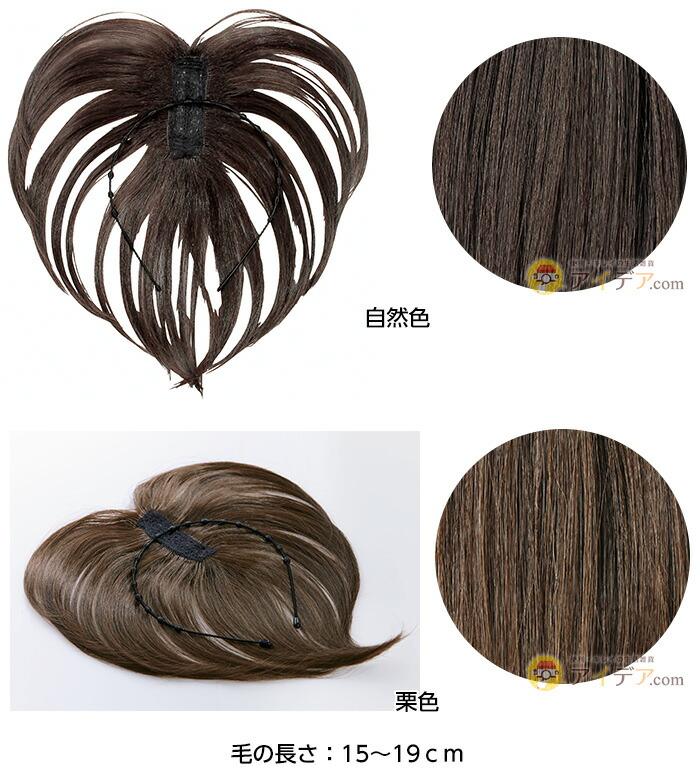 毛の長さ:15〜19cm