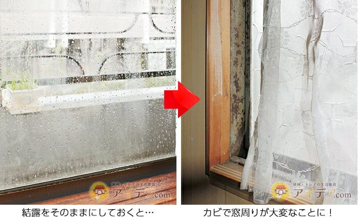 結露をそのままにしておくと…カビで窓周りが大変なことに!