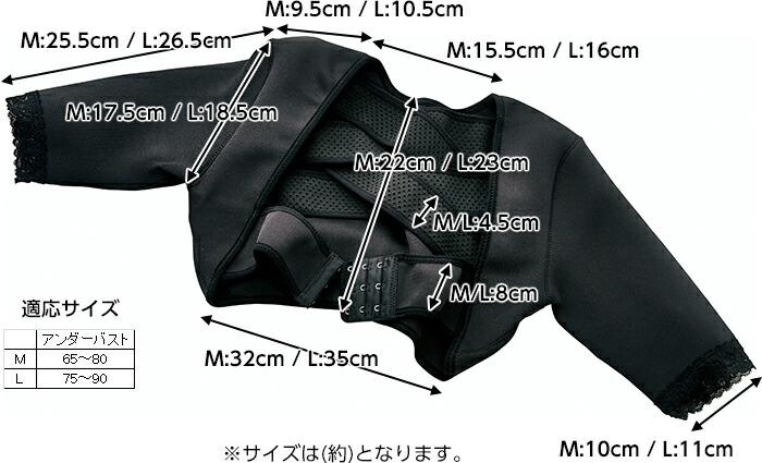 M:アンダーバスト 65〜80cm 、 L:アンダーバスト 75〜90cm