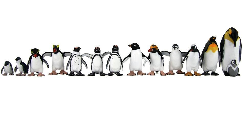 体長・大きさの比較が出来る1/12スケールのペンギン フィギュア