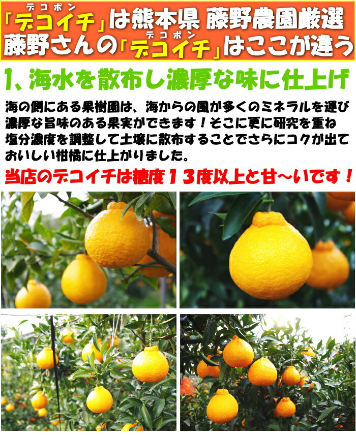 【★送料無料】紀州有田でこぽん20玉入り2L約5kgポンカンと清見オレンジの交配品種で今話題の人気果物です形は凸デコですが、とってもフルーティですでこぽんを産地直送でお届けします