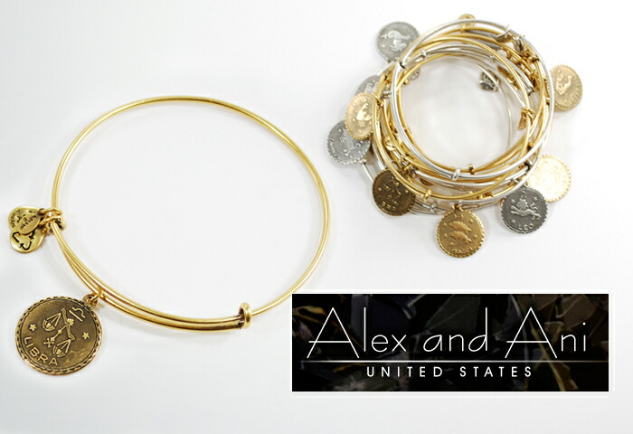 Alex & older brother alex and ani bangle constellation