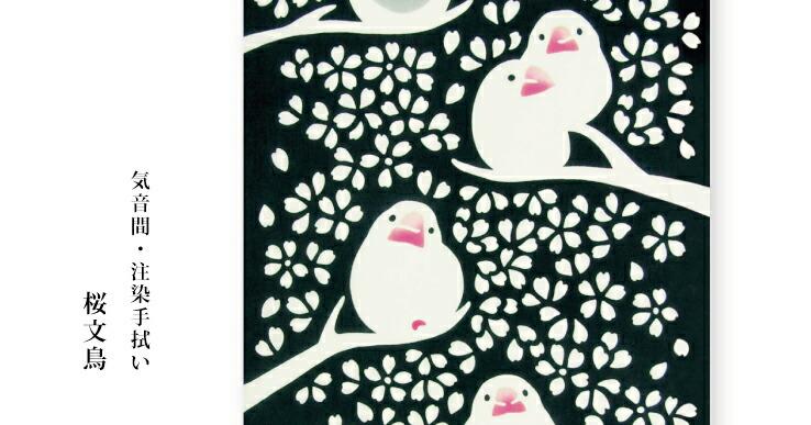 kenema 桜文鳥