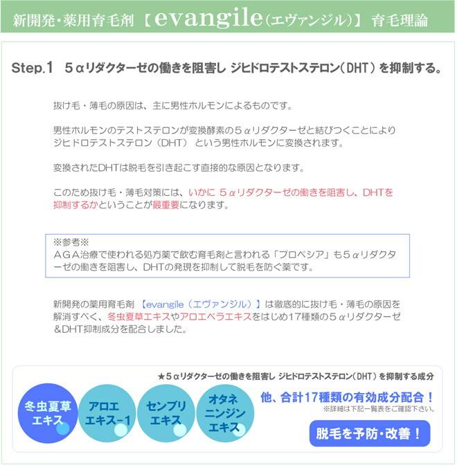 薬用育毛剤 エヴァンジル 5αリダクターゼ&DHT抑制成分 冬虫夏草 アロエ