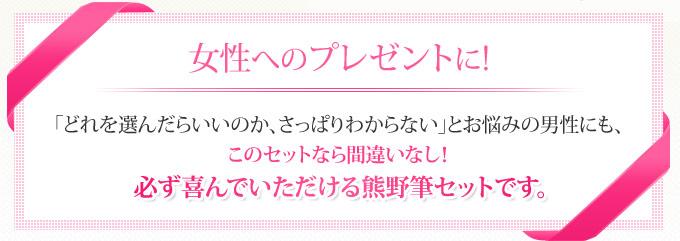 女性へのプレゼントに 熊野筆セット
