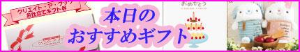 出産祝いのエコー写真アルバム、誕生日プレゼントに絵本やボイスカード