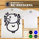 Invisible toe Feng Tian shopping beauty pig series recently spun tenjiku short sleeve T shirt