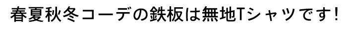豊天商店 無地 つむぎ天竺半袖Tシャツ 【Tシャツ ぶーでん 和柄】