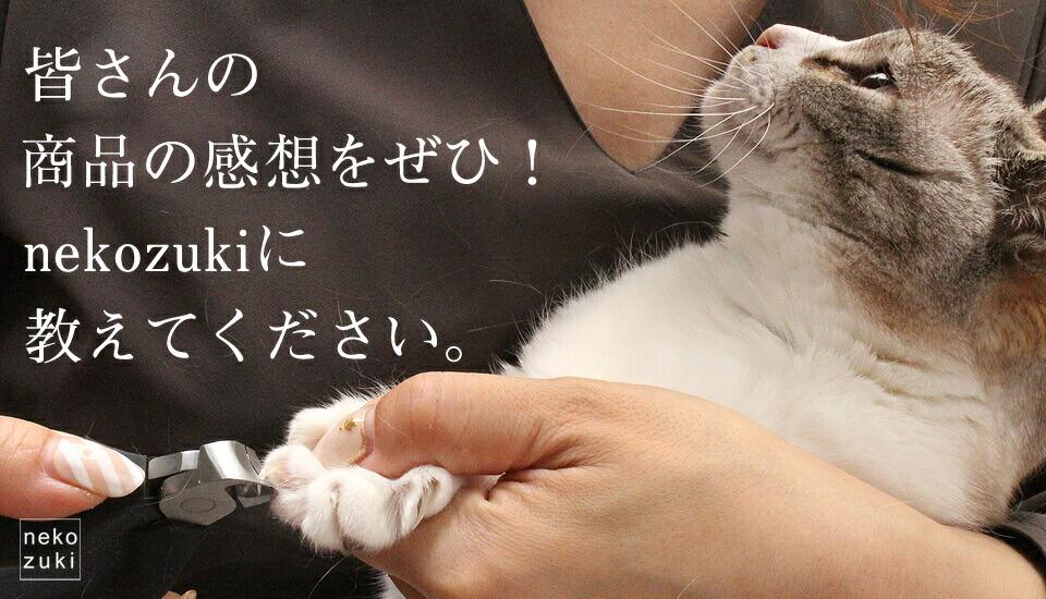 ネコの爪きり事情アンケート