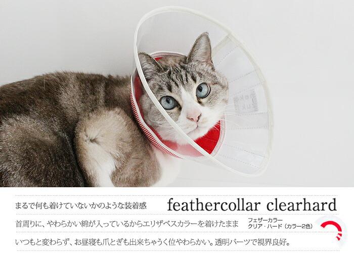 柔らかいエリザベスカラー 猫