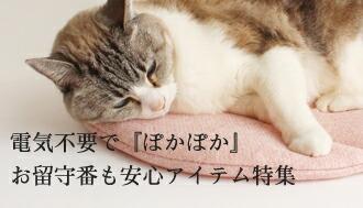 夏にお留守番をするネコのためのお役立ち商品