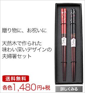 箸 エコ箸 夫婦箸 お揃い セット 2本セット 2膳セット プレゼント お祝い品 贈り物