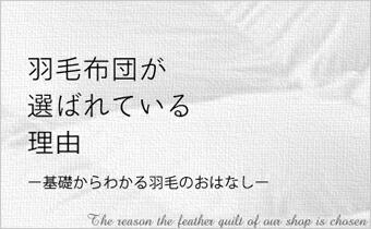 基礎からわかる羽毛ふとん 羽毛布団 羽毛フトン ダウン フェザー 日本製 国内製造 国内生産の説明