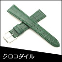 Watch belt watch band crocodile watch band BAMBI mens 20 mm Green for watch Bambi watch belt Bambi watch band