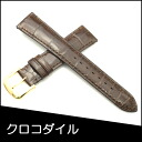 Belt watch band crocodile watch band warriors (Musou) soles material Croc BAMBI Mens Watches 19 mm chocolate for watch Bambi watch belt Bambi watch band
