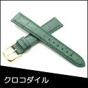 Watch belt watch band crocodile watch band BAMBI mens 18 mm Green for watch Bambi watch belt Bambi watch band