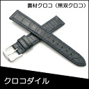 Watch belt watch band warriors behind the scenes material Croc crocodile watch band BAMBI mens 17 mm Navy for watch Bambi watch belt Bambi watch band