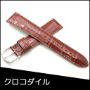 Watch belt watch band crocodile watch band BAMBI mens 18 mm Brown watch for Bambi watch belt Bambi watch band