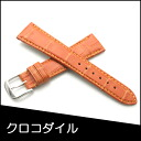 Watch belt watch band crocodile watch band BAMBI mens 20 mm Orange watch for Bambi watch belt Bambi watch band