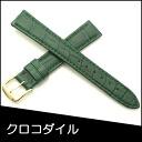 Watch belt watch band crocodile watch band BAMBI mens 16 mm Green for watch Bambi watch belt Bambi watch band